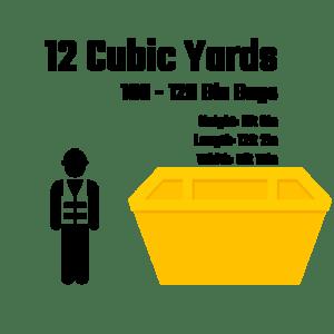 12 cubic vector